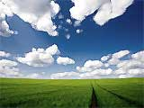 arbres fruitiers, pepiniere, serres, agriculture Herault, F34, France